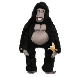 Large Primate - Silverback