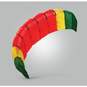 Rasta Buzz Kite