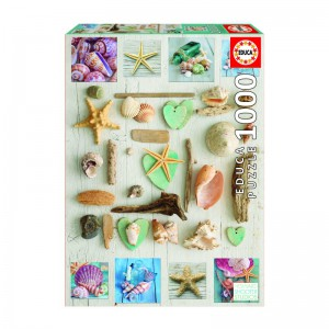 Seashells 1000 piece Jigsaw Puzzle