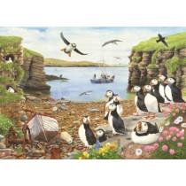 Puffin Parade